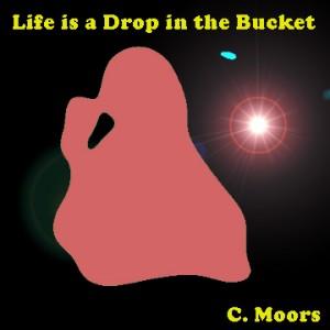 Bucket_Cover